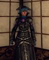 Tenobrous armorset appearance.png