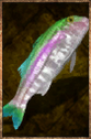 Raw Rainbow Trout.png