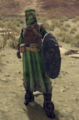 Desert Lieutenant - NewBanditEquip DesertLieutenant1 C.png
