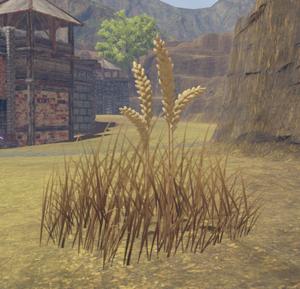 Wheat (Gatherable).png