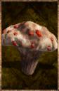 Blood Mushroom.png
