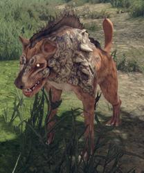 Hyena - Hound.png