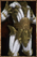 Candle Plate Armor.png