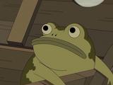 Лягушка Грега
