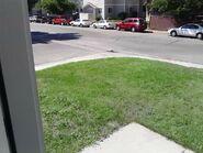 Lawn, part 2