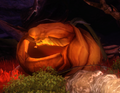 Mother Pumpkin 2