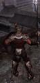 Fallen Knight back