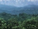 Великий лес Тоб