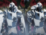 Nazarick Elder Guarder