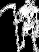 Skeleton Databook 03