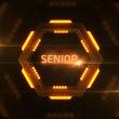 ULevel 7 Senior.png