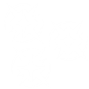 IconStickyBombs