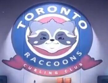 Toronto Raccoons.jpg