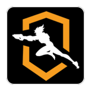 OWL inaugral player icon.png