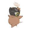 Spray Roadhog Free Pig.png