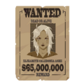 Spray Ashe Wanted.png