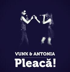 Vunk-pleacawide3.jpg