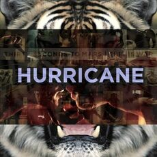 This is war 30 seconds to mars Hurricane.jpg