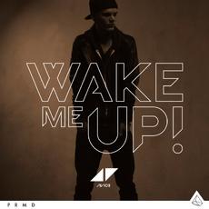 Avicii-Wake-Me-Up-2013-1200x1200.png