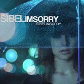 SibelI'msorry.jpg