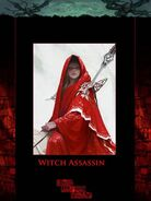 Witch assasin