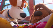 Secretlifeofpets2-animationscreencaps.com-1135