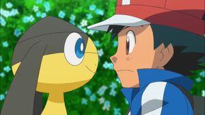 Ash and Helioptile