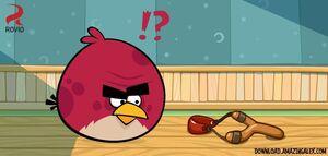 Big-Brother-Bird-angry-birds-32080200-720-344