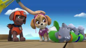 PAW.Patrol.S01E15.Pups.Make.a.Splash.-.Pups.Fall.Festival.720p.WEBRip.x264.AAC 644844
