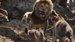 Lionking2019-animationscreencaps.com-3331