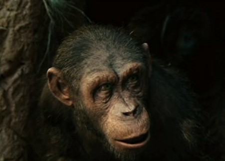 Andy (Planet of the Apes)