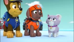 Paw Patrol (Chase and Zuma) Screenshot (947)