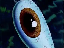 Mr. Krabs eye