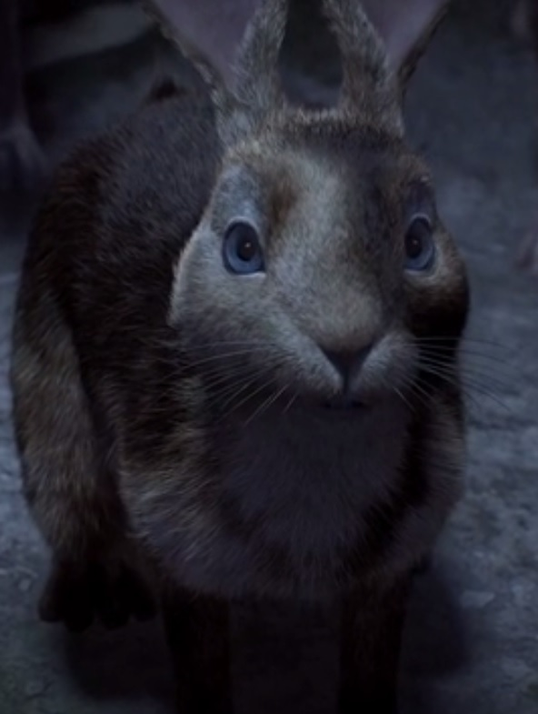Clover (Watership Down)