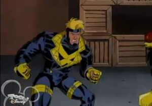 Havok animated