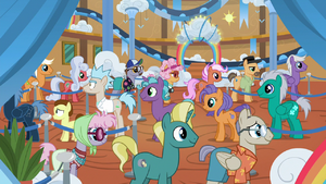 Ponies in line for the Wild Blue Yonder