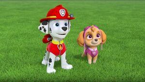 PAW Patrol Pups Save the Songbirds Scene 36