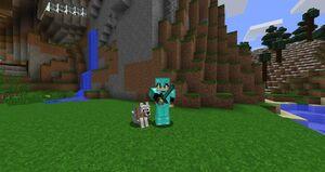 Playerandwolf
