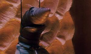 James-giant-peach-disneyscreencaps.com-3702