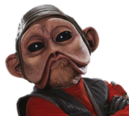 Old nien nunb - profile