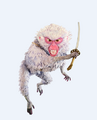 Monkey+1