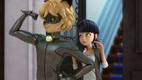 The Evillustrator - Cat Noir and Marinette 10