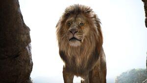 Lionking2019-animationscreencaps.com-753