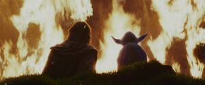 Luke and Yoda watch the tree library burn