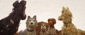 Isleofdogs-animationscreencaps.com-1525