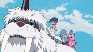 Ikkakumon, Joe, Sora and Biyomon