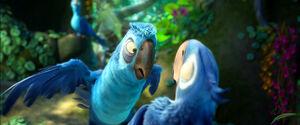 Eduardo threatening Blu