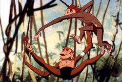A-monkey-s-tale.jpg