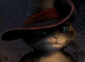 Kitty wearing Puss's hat