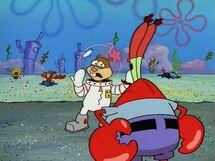 Sandy speaks to Mr. Krabs